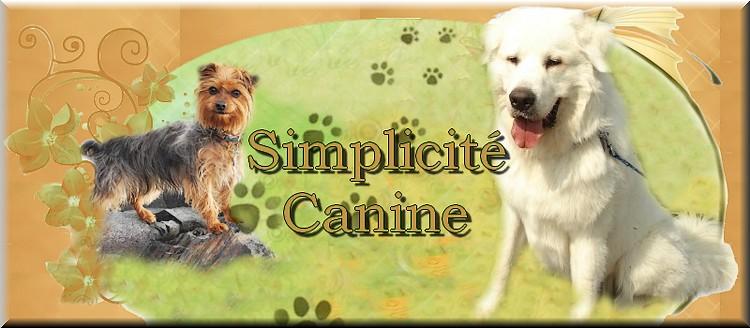 Simplicité Canine