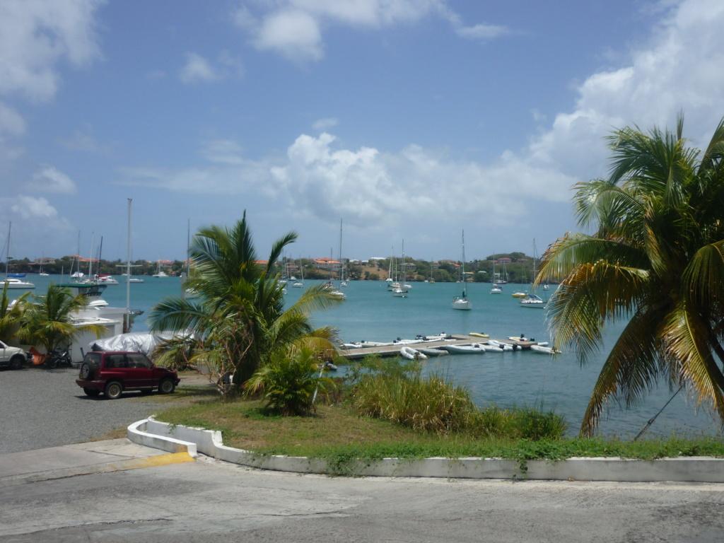 Périgrinations aux Caraïbes et en Atlantique P1030714