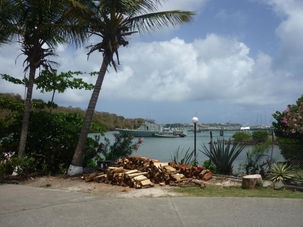 Périgrinations aux Caraïbes et en Atlantique P1030716