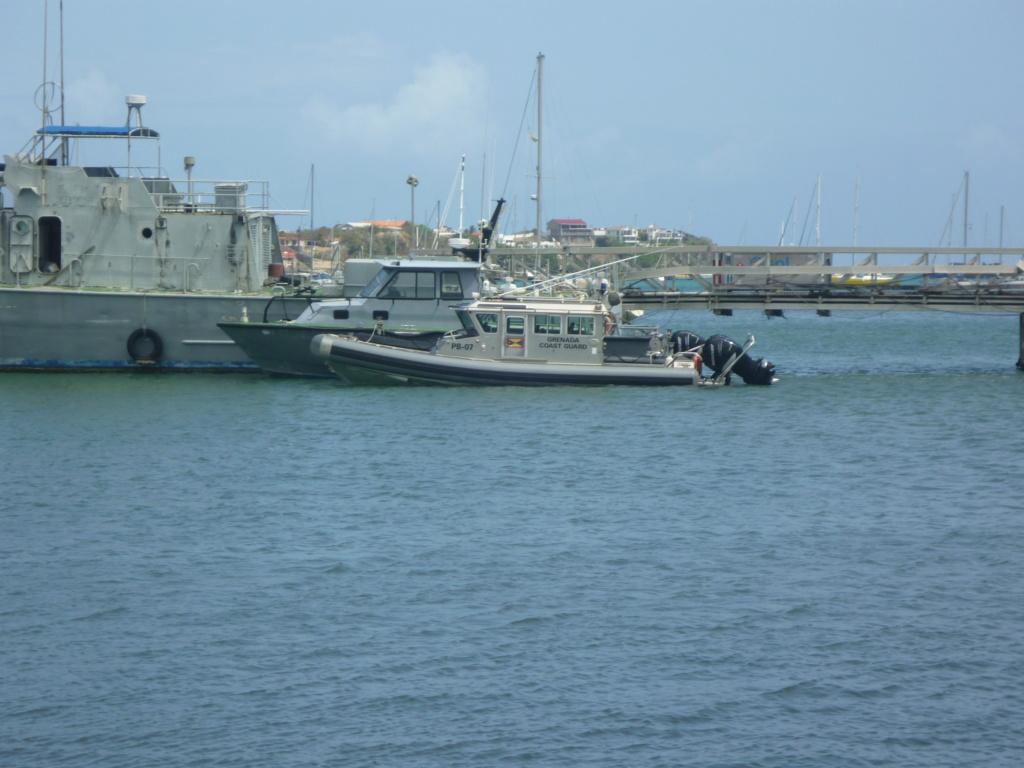 Périgrinations aux Caraïbes et en Atlantique P1030717