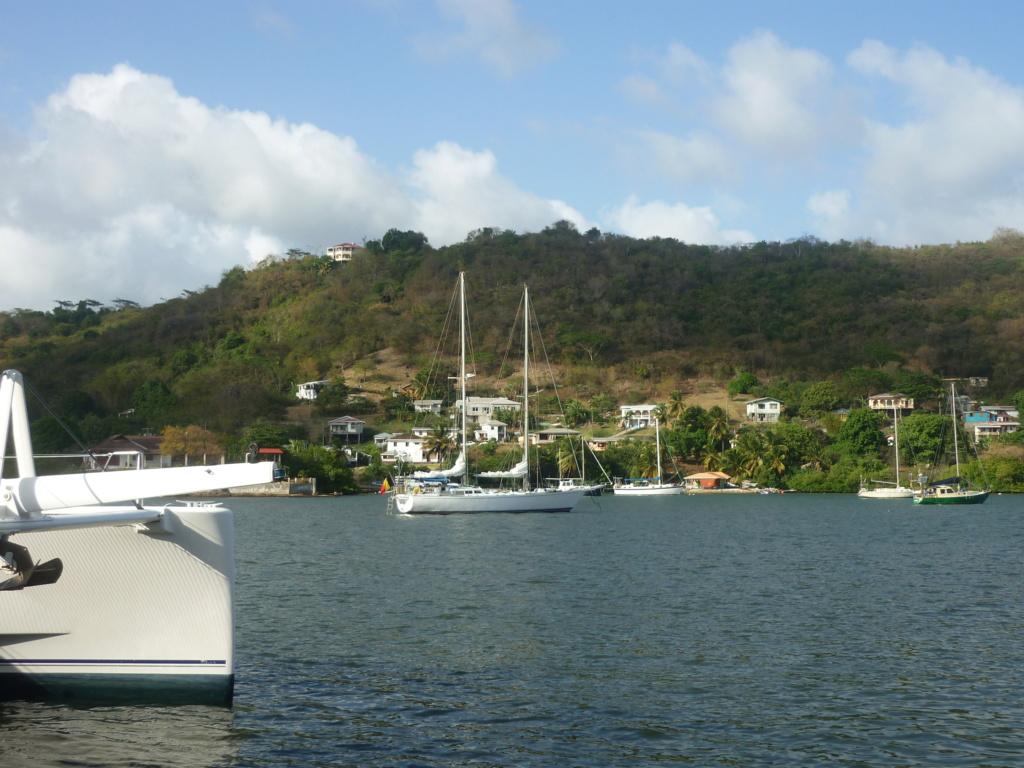 Périgrinations aux Caraïbes et en Atlantique P1030721