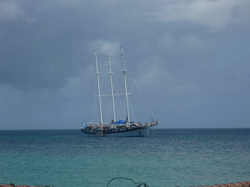 Périgrinations aux Caraïbes et en Atlantique P1030810