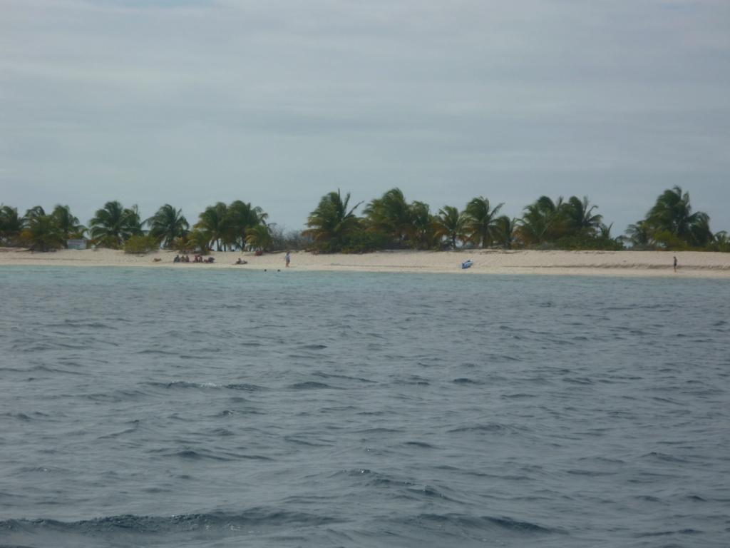 Périgrinations aux Caraïbes et en Atlantique P1030812