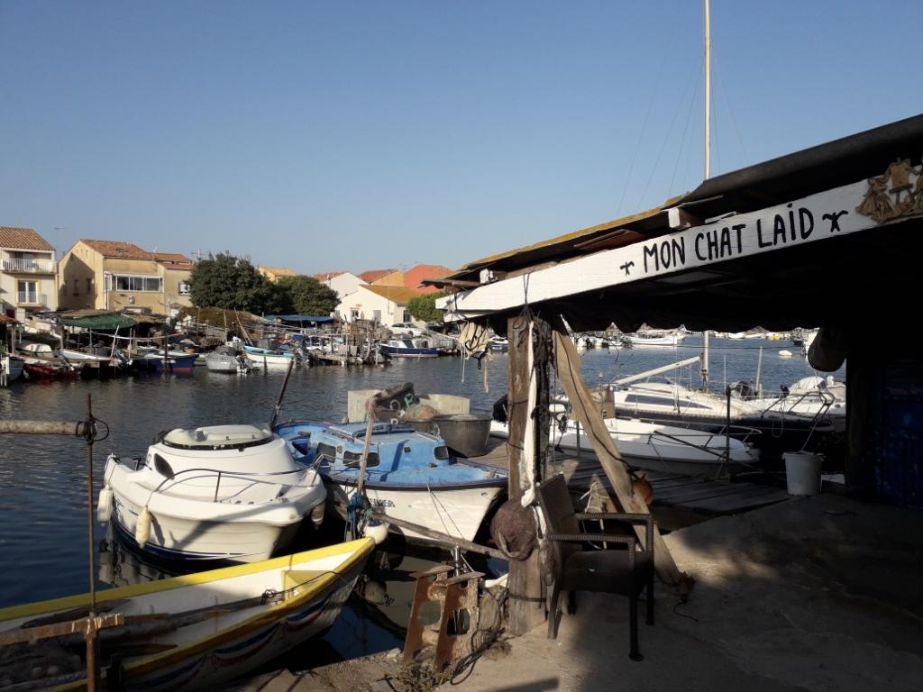 De la Riviera à la Gironde [5 au 30 septembre] saison 13 •B - Page 3 20180121