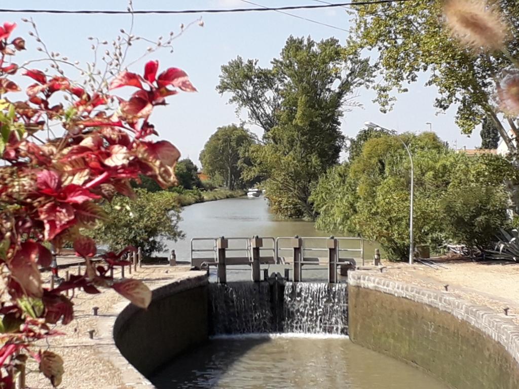 De la Riviera à la Gironde [5 au 30 septembre] saison 13 •B - Page 3 20180135