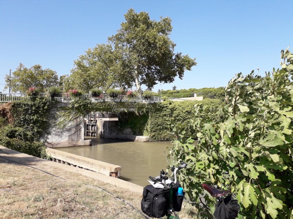De la Riviera à la Gironde [5 au 30 septembre] saison 13 •B - Page 3 20180136