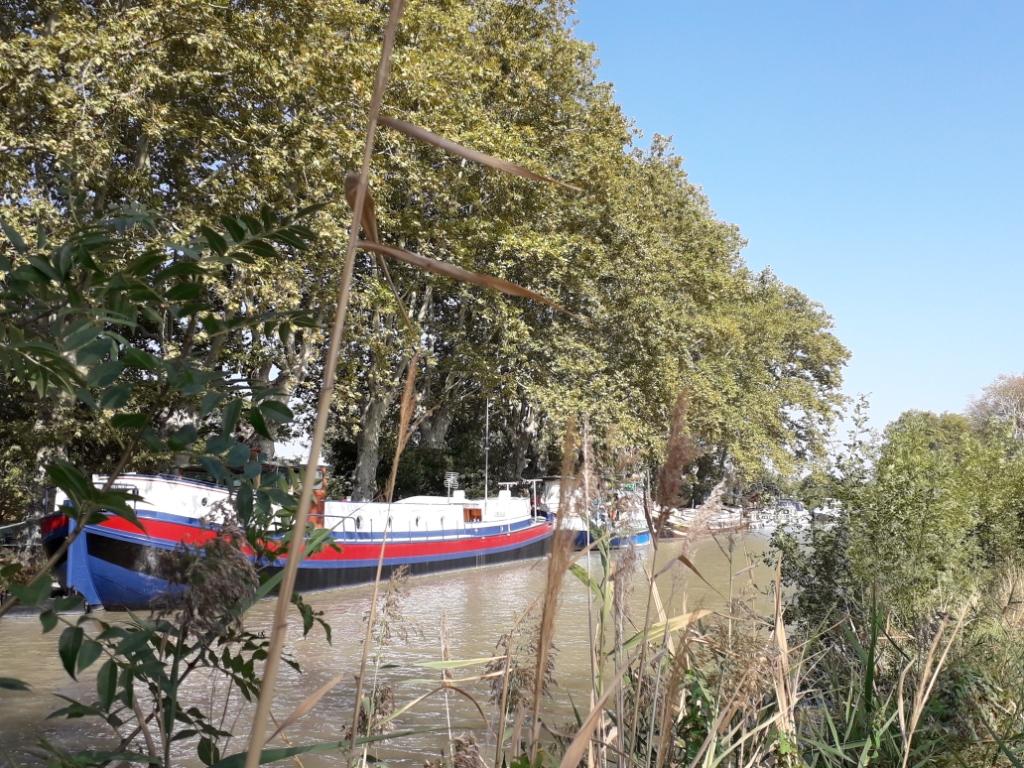 De la Riviera à la Gironde [5 au 30 septembre] saison 13 •B - Page 3 20180138