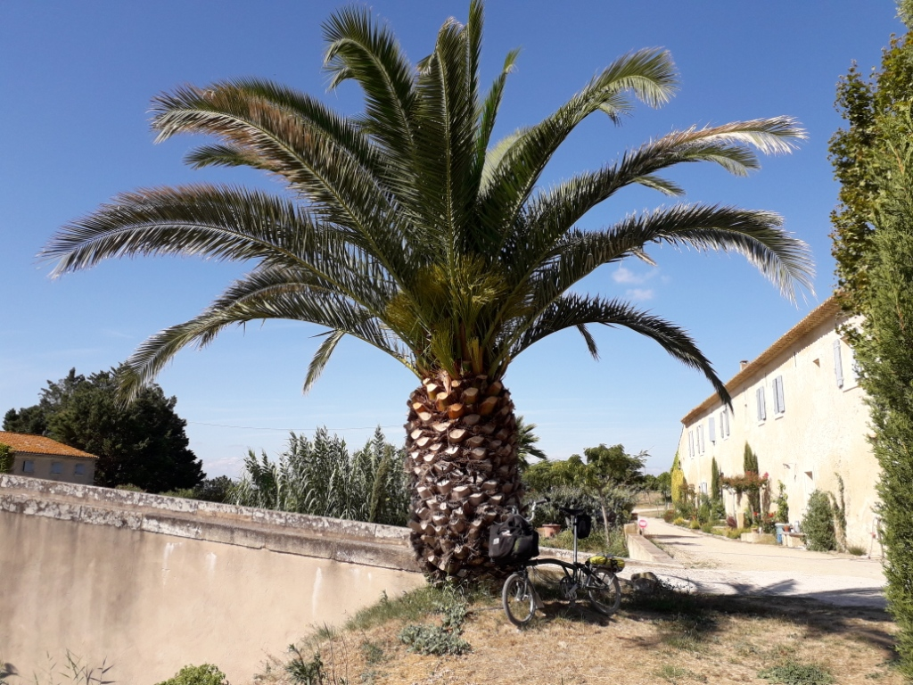 De la Riviera à la Gironde [5 au 30 septembre] saison 13 •B - Page 3 20180158