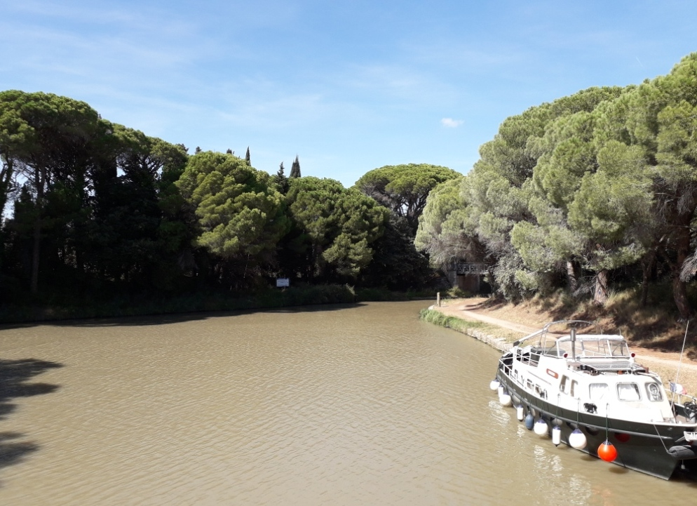 De la Riviera à la Gironde [5 au 30 septembre] saison 13 •B - Page 3 20180164