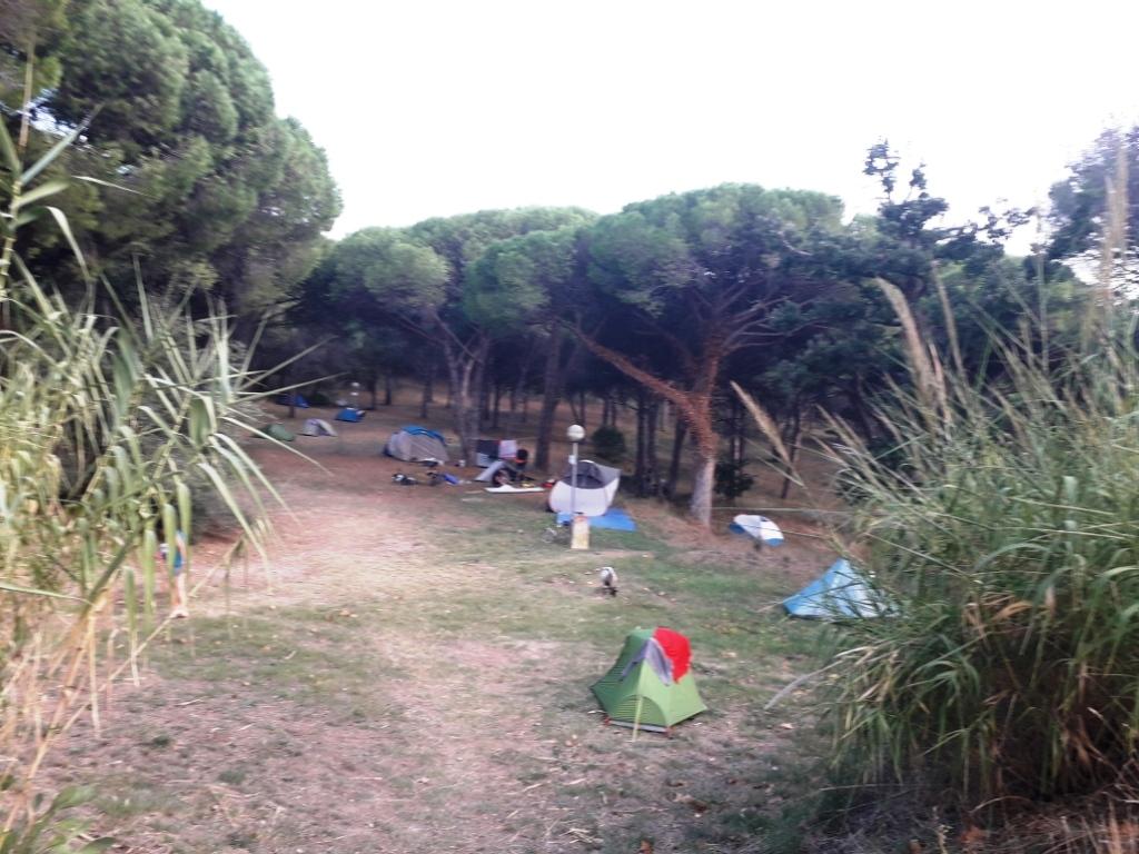 De la Riviera à la Gironde [5 au 30 septembre] saison 13 •B - Page 3 20180923