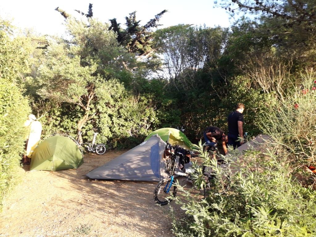 De la Riviera à la Gironde [5 au 30 septembre] saison 13 •B - Page 3 20180939