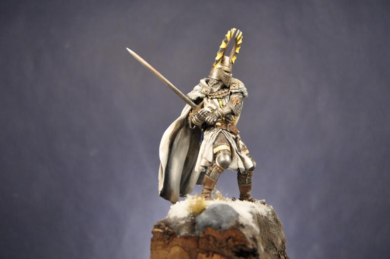 Chevalier teutonique. 90 mm Pegaso - Page 2 Dsc_0340