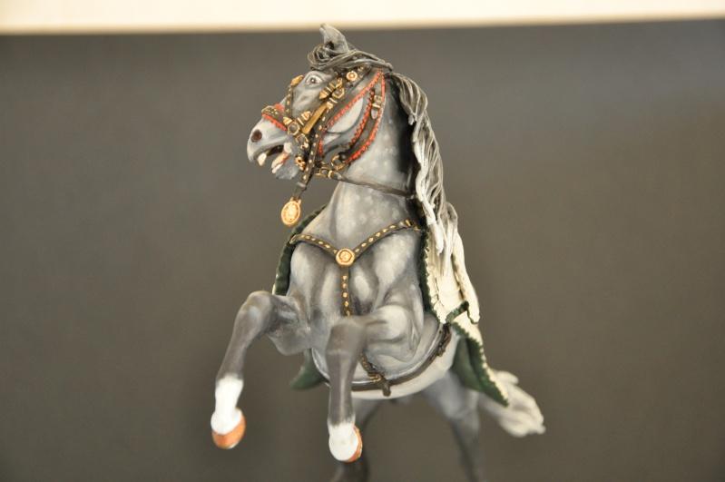 Officier des Chasseurs à cheval de la Garde Impériale- 90 mm Andréa Dsc_0384