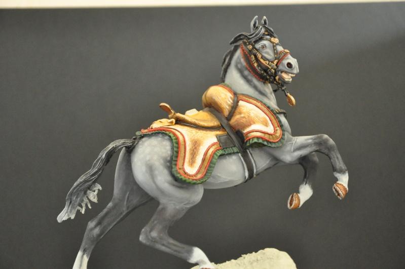 Officier des Chasseurs à cheval de la Garde Impériale- 90 mm Andréa - Page 2 Dsc_0391