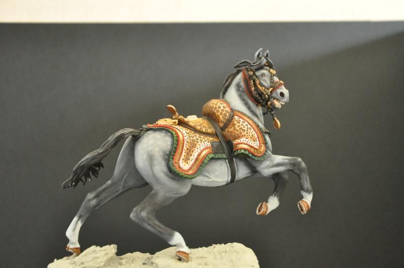 Officier des Chasseurs à cheval de la Garde Impériale- 90 mm Andréa - Page 2 Dsc_0394