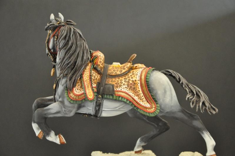 Officier des Chasseurs à cheval de la Garde Impériale- 90 mm Andréa - Page 2 Dsc_0396