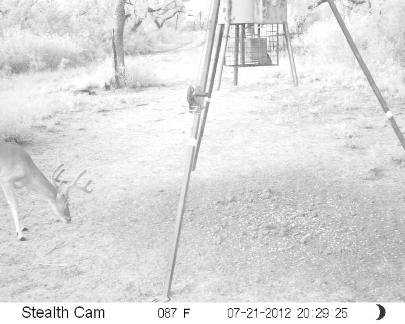 Cam pics Sunp0210