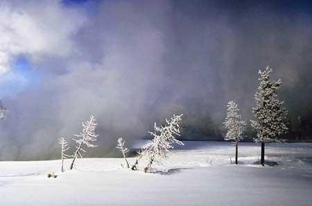 Neige de janvier (reflet du mois) Neige_10