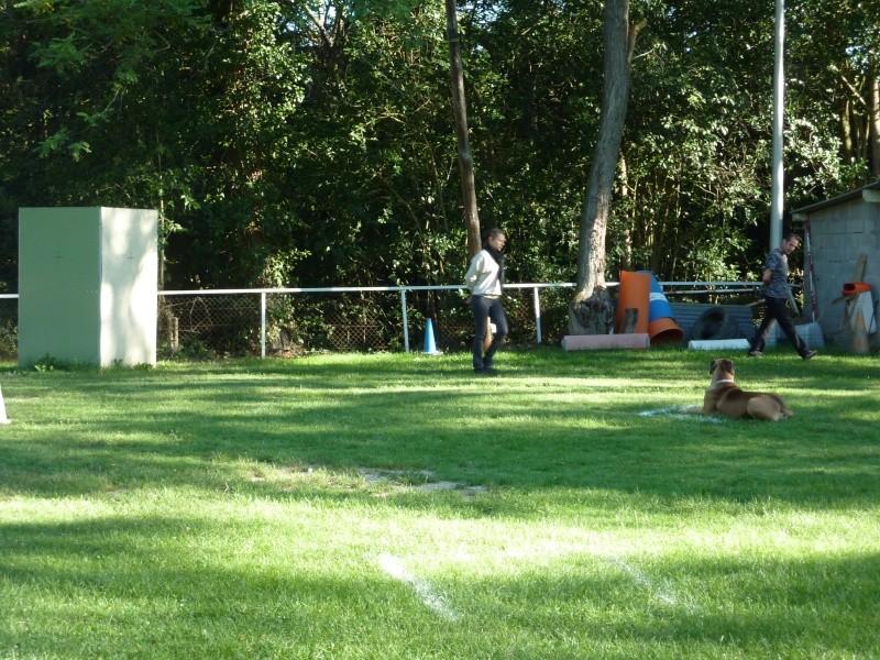 photos du concours du club PARTIE I P1020027