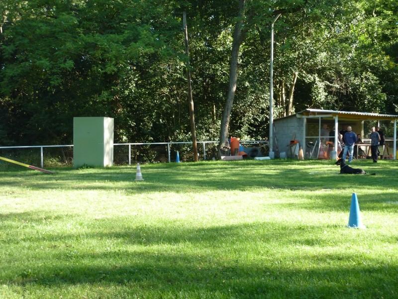 photos du concours du club PARTIE I P1020042