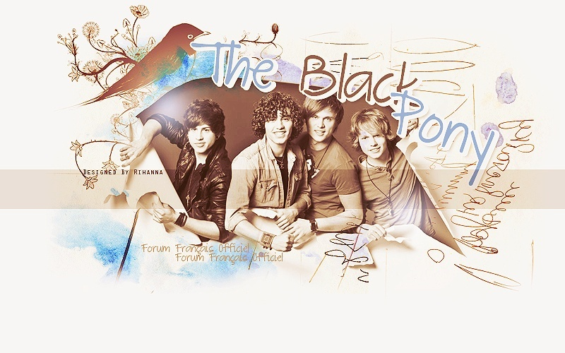 The Black Pony - Forum Officiel Francophone