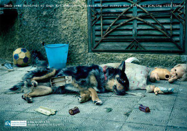 Photo d'une campagne contre l'abandon canin. 52323610