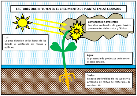Artículo: Los problemas de los Cultivos en la Ciudad Imagen10