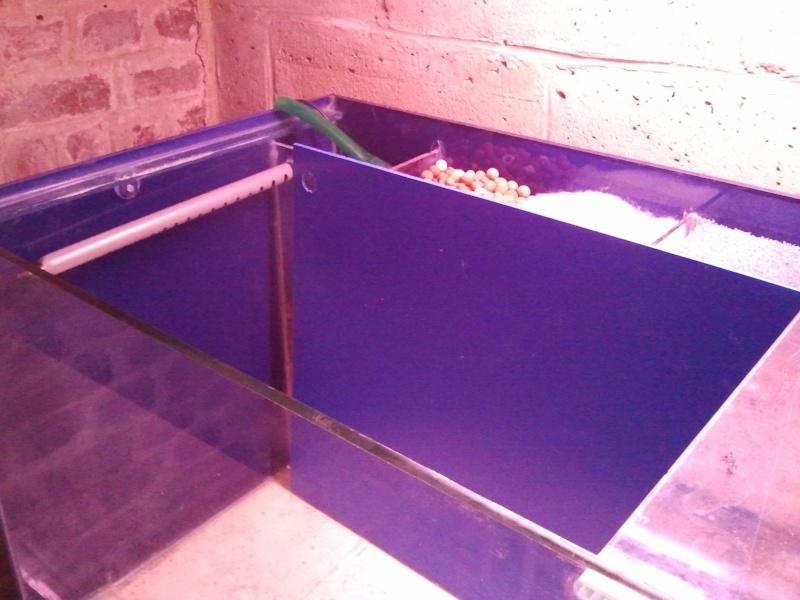 ma décante en plexis+ verre maison ( récup)  2012-015