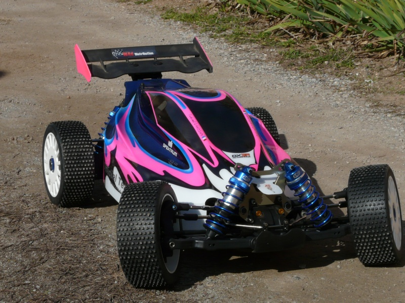 buggy losi competition P1040811