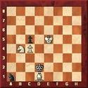 Kavalek in Huffington: Afek's Chess Puzzles Afek0110