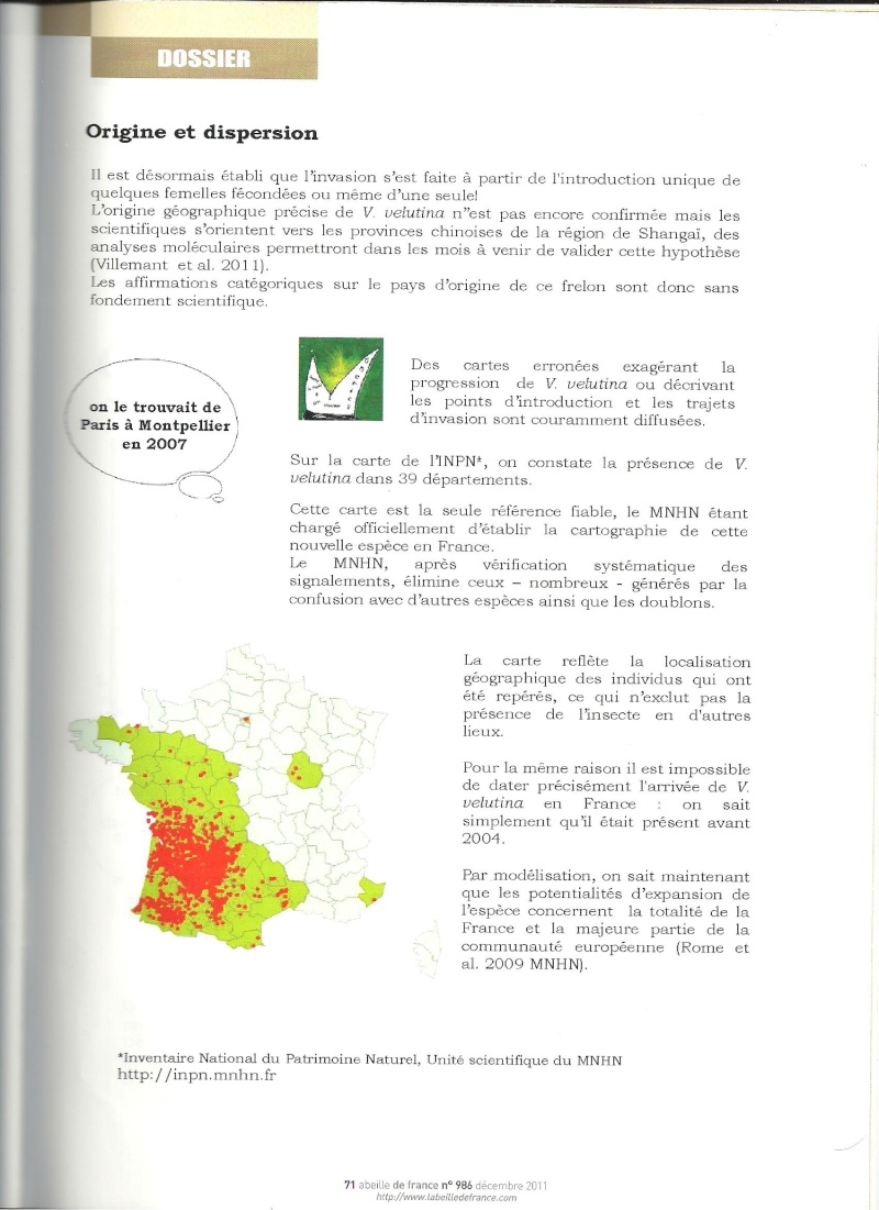 faire le tri dans les informations sur Vespa velutina nigrithorax. Frelon12