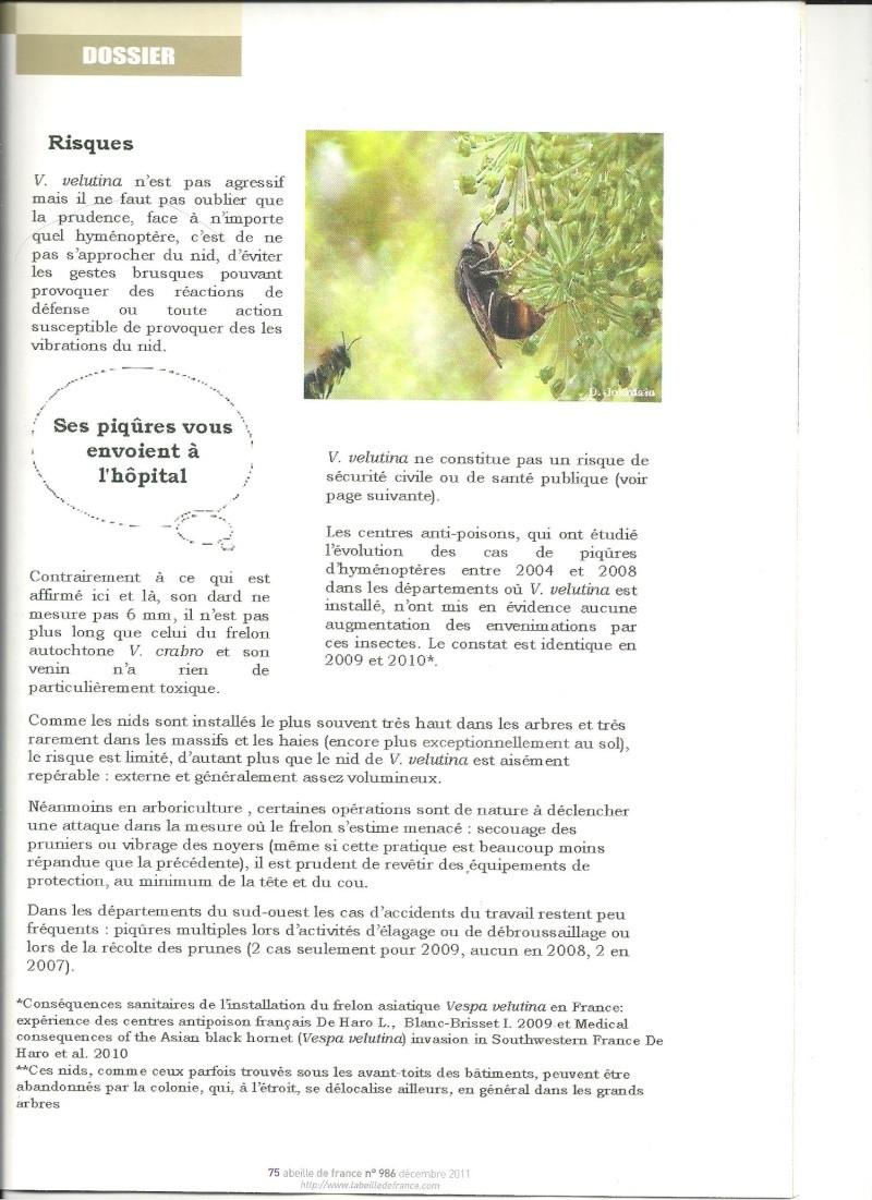 faire le tri dans les informations sur Vespa velutina nigrithorax. Frelon16