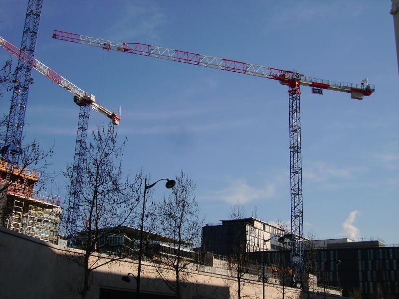 Grues à Paris Rive Gauche Imgp3513
