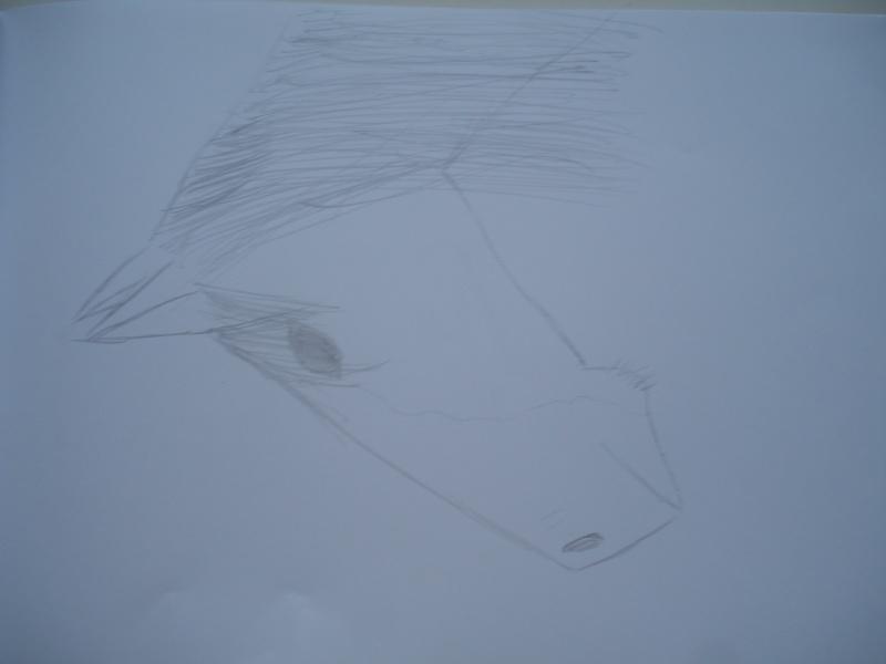 Voili mes dessinous !! - Page 2 Dsc04110