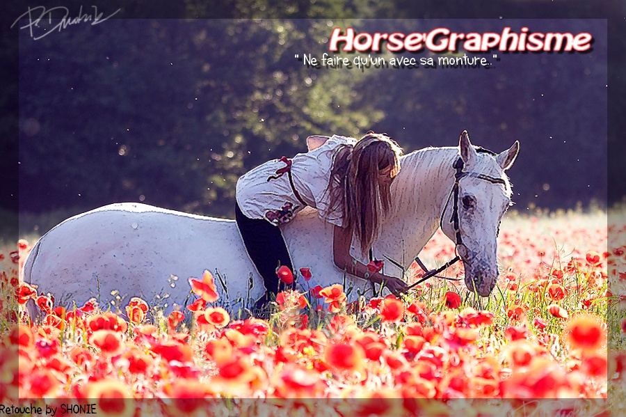 Horse' Graphisme