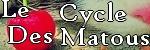 La Guerre Des Clans; Le Cycle des Matous Le_c_d10