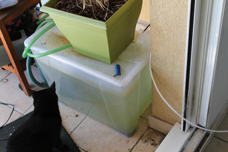 systeme eau osmosée automatisée Img_1522