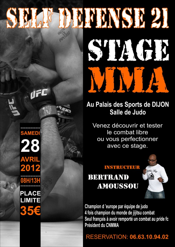 stage de MMA avec Bertrand Amoussou Dijon 40484210