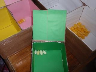 Preparando las cajas para los huevos de este año P5144214