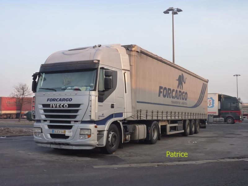 Forcargo - Grijo 001_co21