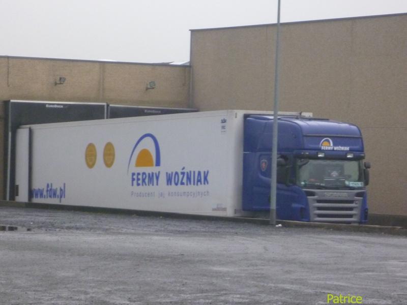 Fermy Wozniak (Rawicz) 008_co30
