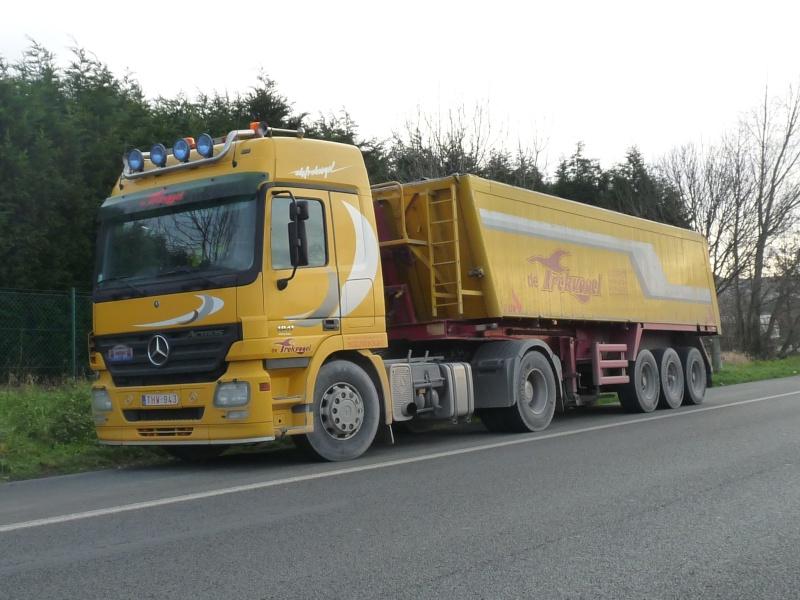 De Trekvogel (Nieuwpoort) 01032