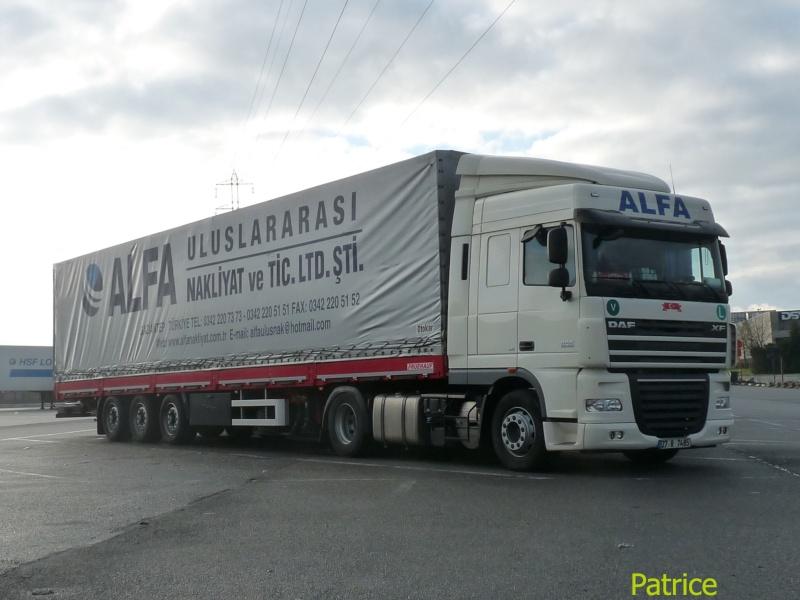 Alfa (Gaziantep) 023_co17