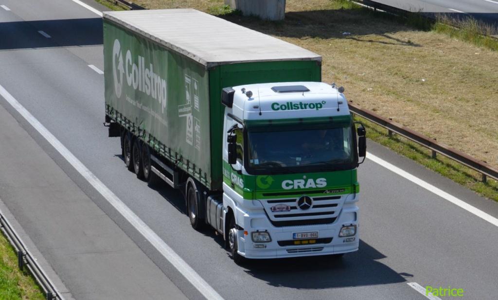 Cras (Waregem) 179_co14