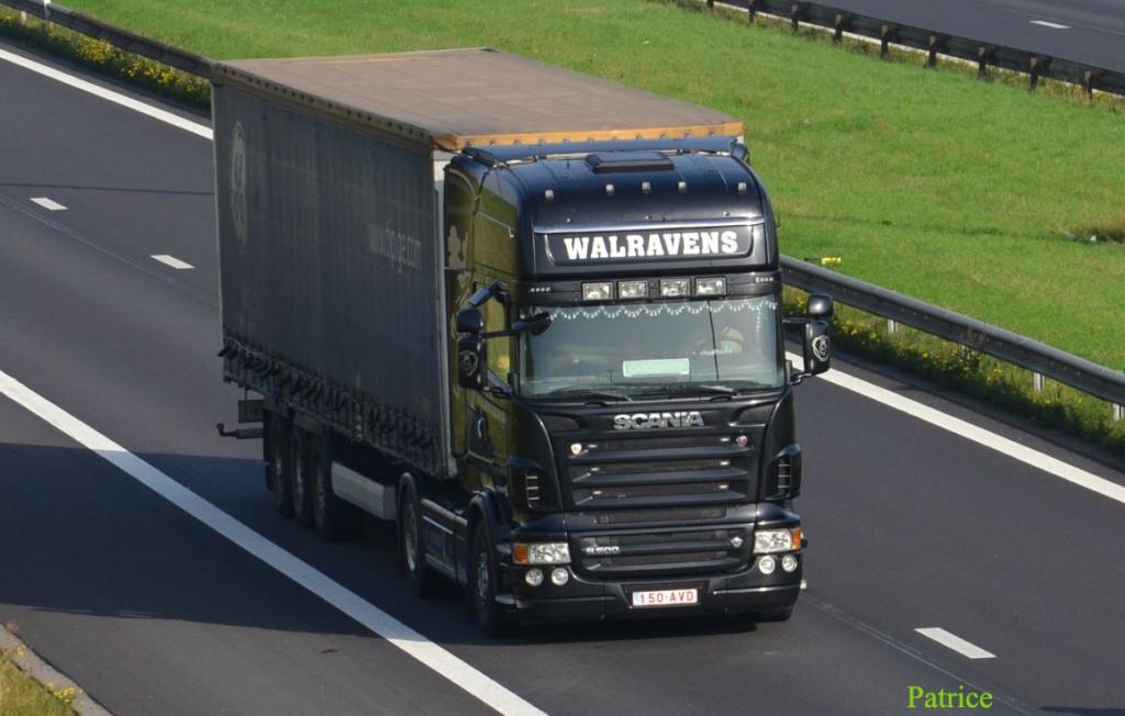 Walravens (Schepdaal) 511a_c10
