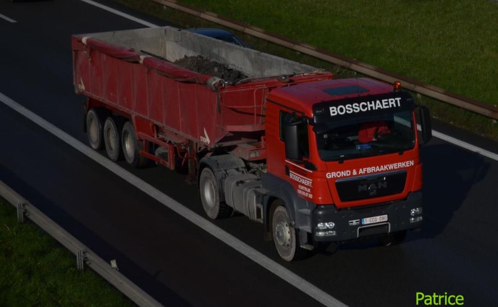 Bosschaert Boss_210
