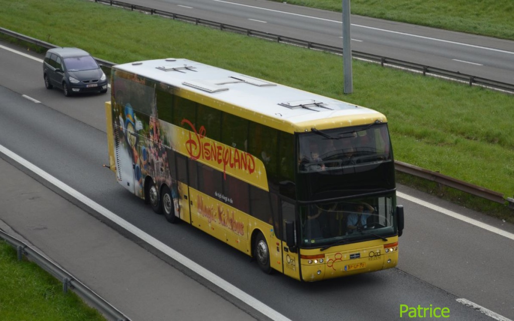 Cars et Bus des Pays Bas  Disney10