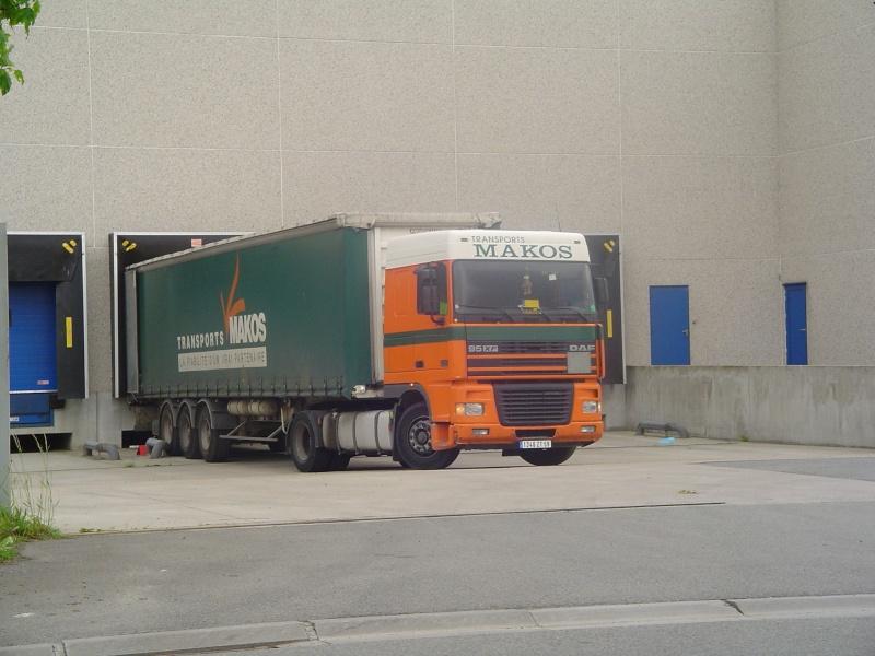 Makos (Gondecourt 59) Dsc12210