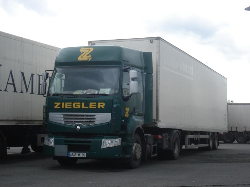 Ziegler P250a110