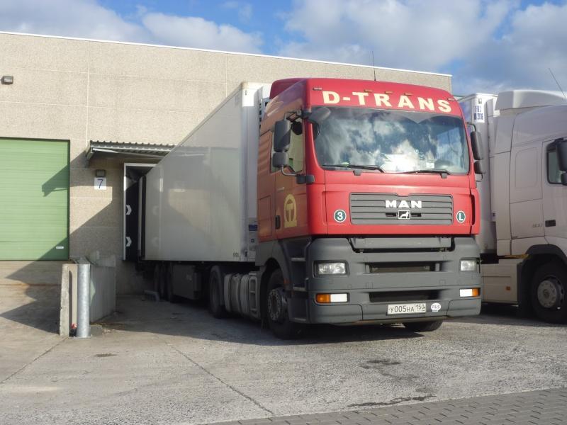 D Trans  Phot1319